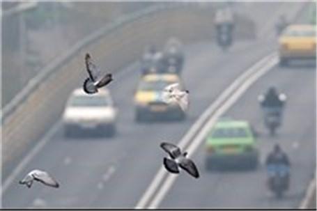 مقاومت وزارت صنعت دربرابر نصب فیلتر دوده بر خودروهای دیزلی