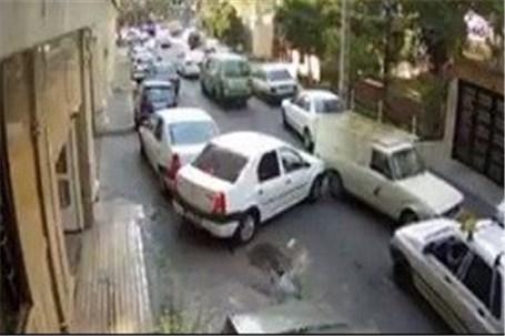 «راننده وانت جنجالی» پاکبان محله می شود